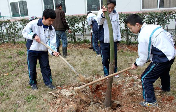 瓯海区新桥校园初中植树v校园男生中学用品图片