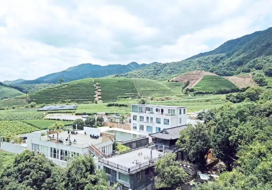 首页 旅游资讯 旅游快讯  转塘街道何家南村168号 龙坞茶镇位于杭州
