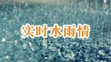 实时水雨情
