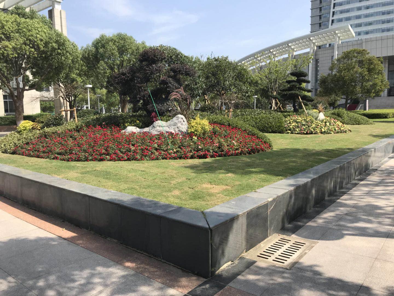 上海绿植墙_沈阳仿真绿植墙_真绿植墙价格