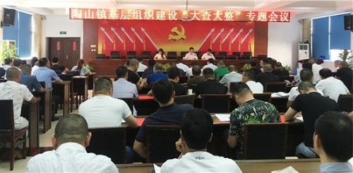"""陶山镇打出系列""""组合拳""""抓基层党建"""
