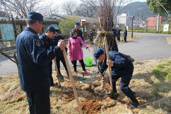 大碶九峰山社区组织区域内预备党员,部队官兵共同开展植树造林活动,共