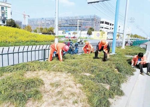 浦江推进文明城市创建工作