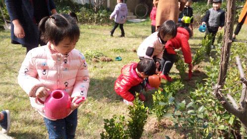 姜山镇各社区开展精彩植树节活动