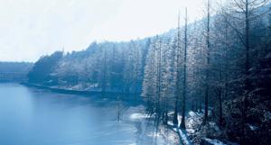 四明山国家森林公园_旅游风光片介绍