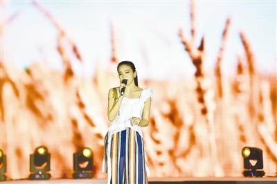 第二届京杭大运河国际诗歌大会暨运河申遗成功四周年纪念晚会在香